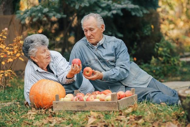 収穫と夏の庭に座っている老夫婦 無料写真