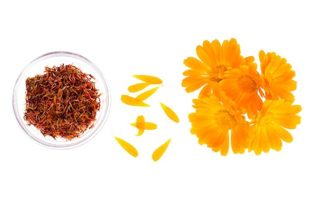 オレンジ色の花キンセンカオフィシナリスと薬用植物 Premium写真