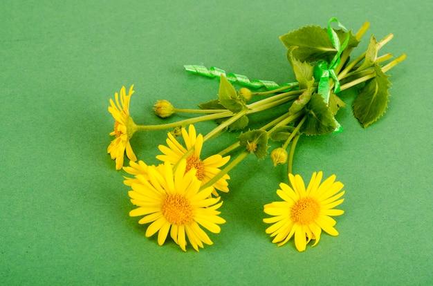 Дикие полевые желтые цветы на ярком цветном фоне Premium Фотографии