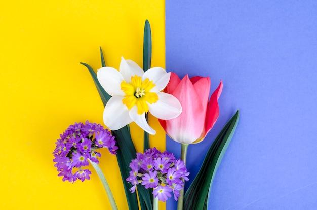 Небольшой букет из весенних садовых цветов на светлом фоне. Premium Фотографии
