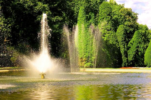 緑豊かな木々の背景に素敵な噴水 無料写真