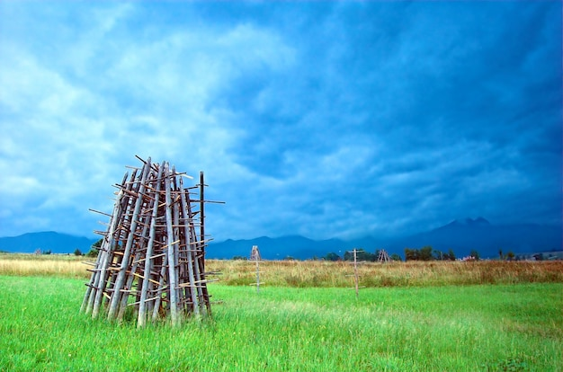 草原での薪のスタック 無料写真