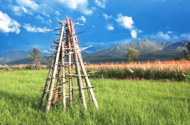 木材は緑の牧草地に置かれ 無料写真