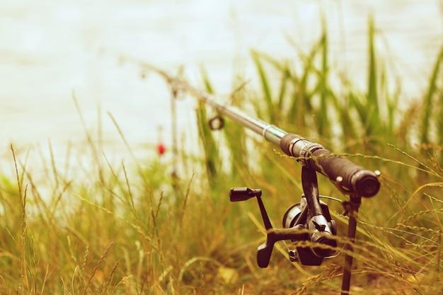 「草の根に取り組む」 無料写真
