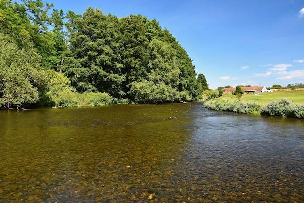 川、森林、太陽、青空の美しい夏の風景。自然の背景。 無料写真
