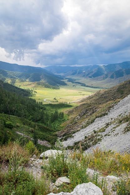 完璧なアスファルトで美しい山道のある風景 Premium写真