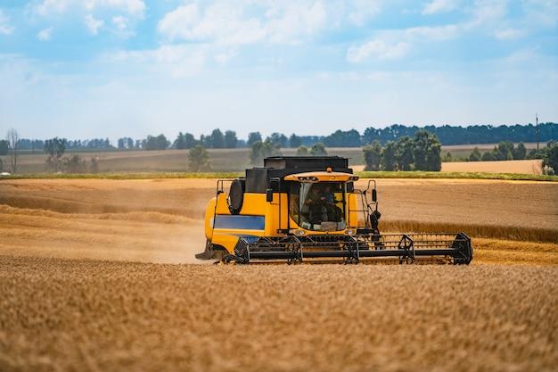 収穫小麦を組み合わせます。フィールドでの穀物収穫設備。収穫期 Premium写真