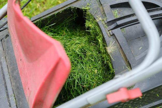 芝刈り機で新鮮な刈られた草のクローズアップ Premium写真
