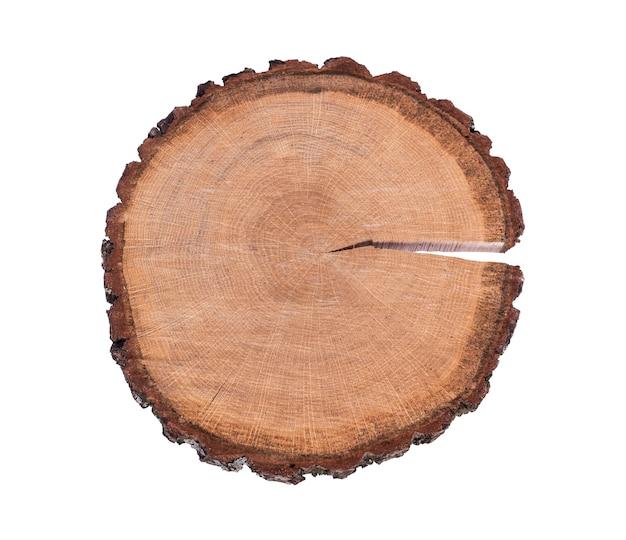 白で隔離される木の幹をカットします。 Premium写真