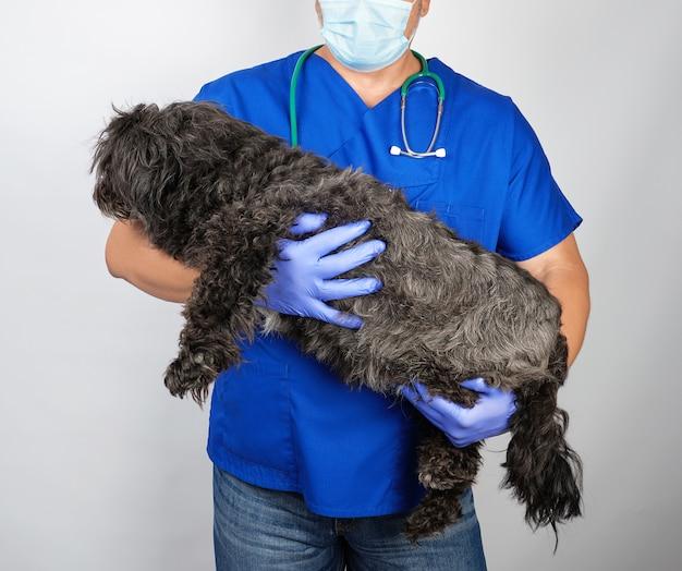 ふわふわの黒い犬を保持している青い制服と滅菌ラテックス手袋の医者 Premium写真