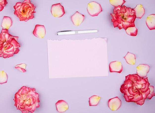 空のピンクの紙のシートとピンクのバラのつぼみ Premium写真