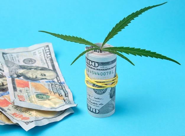 アメリカのドル紙幣と麻の緑の葉 Premium写真
