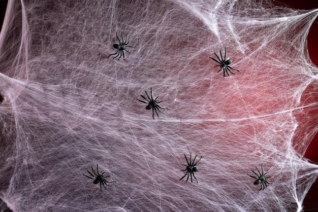 赤いバックライトと黒いクモ、休日ハロウィーンの背景を持つ白い白いウェブ Premium写真