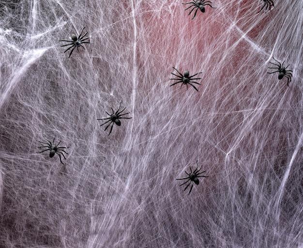 赤いバックライトと黒いクモが付いた伸びた白いウェブ Premium写真