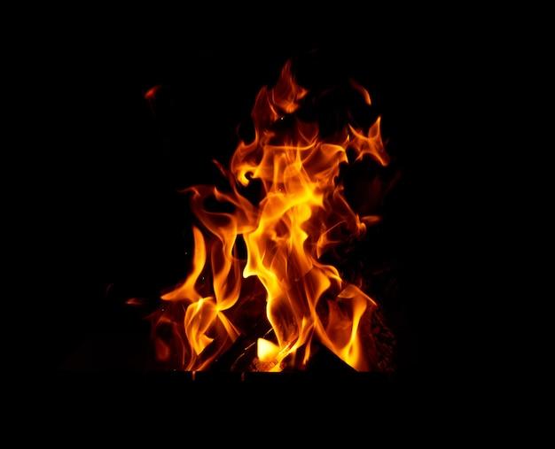 夜のたき火で木の丸太を燃焼 Premium写真