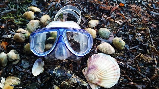 海の海岸でダイビングマスクと貝殻。海辺の休日。夏。 Premium写真