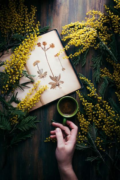 Черный кофе, деревянный стол, ветки мимозы и старый гербарий Premium Фотографии