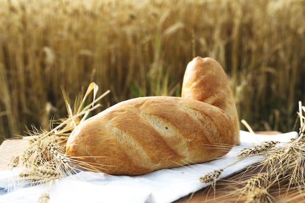 Хлеб в поле картинки для детей