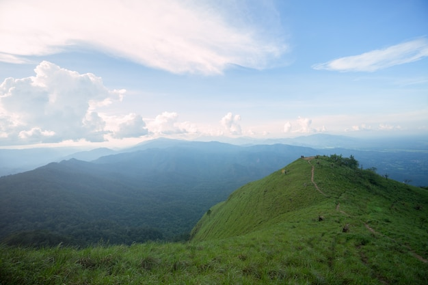 山の上に芝生のフィールドを通して日光 Premium写真