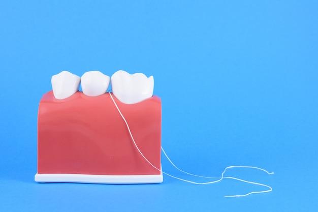 偽口腔歯科医ブルー Premium写真