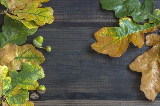 秋の組成物。暗い木製のカラフルな紅葉の枠 Premium写真