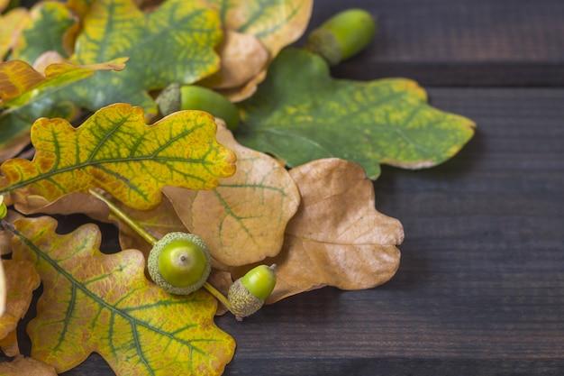 秋の組成物。色鮮やかな紅葉の花束 Premium写真