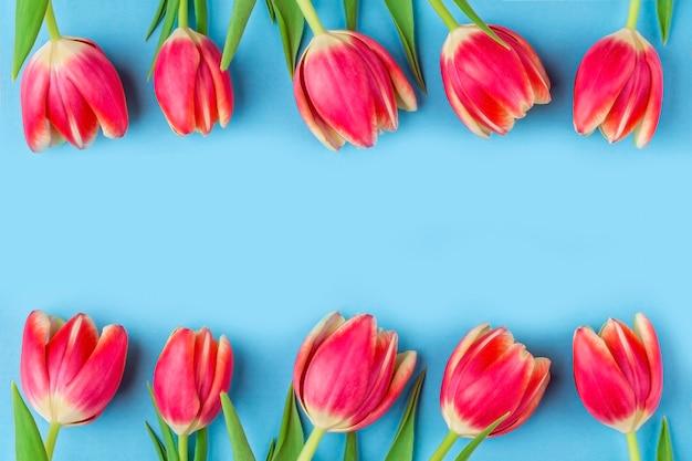 Открытка с рамкой из свежих тюльпанов на синем Premium Фотографии