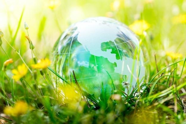 グリーン&エコ環境、庭のガラスグローブ Premium写真