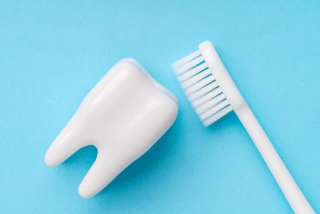 平面図から歯科用機器、スタジオでフラットレイアウト Premium写真