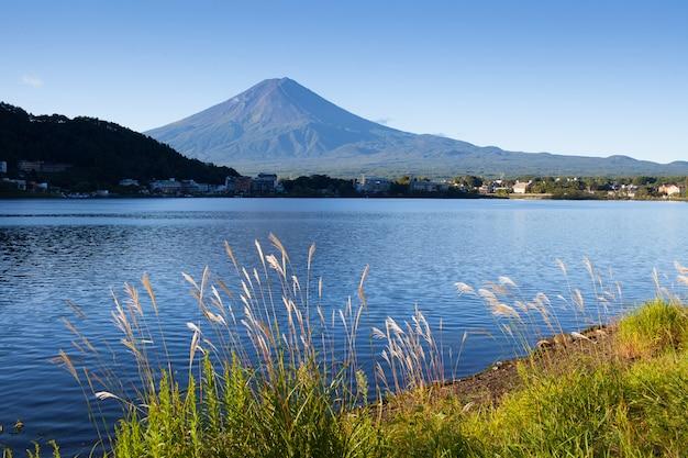 夏の日本の富士山 Premium写真