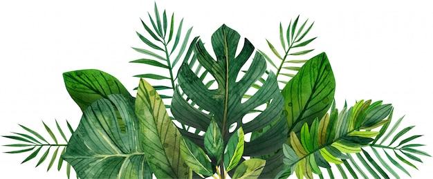 Акварельная рамка из тропических листьев Premium Фотографии