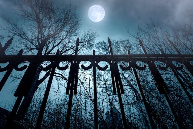 Ужастик. железный забор и лунный свет. кошмар над заброшенным домом. ночное время с туманом и луной. Premium Фотографии