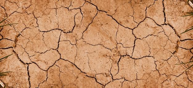 Фоновая текстура сухой грязи Premium Фотографии
