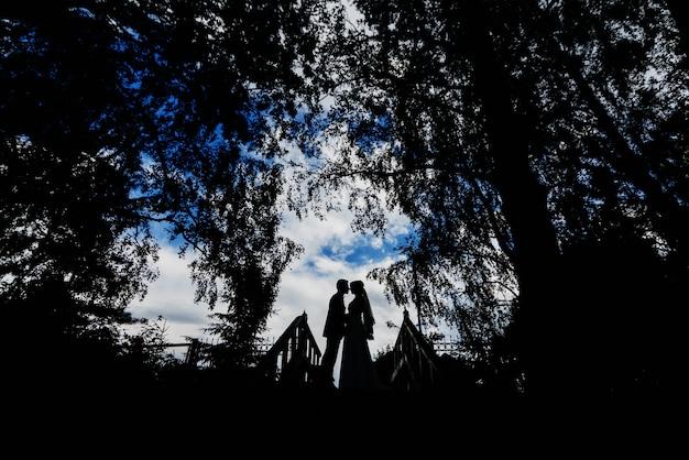 ハグとキスの新郎新婦の結婚式のカップルのシルエット Premium写真
