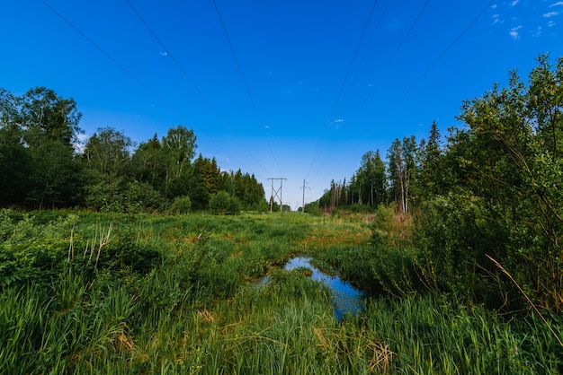 夏の日の森の高圧送電線 Premium写真