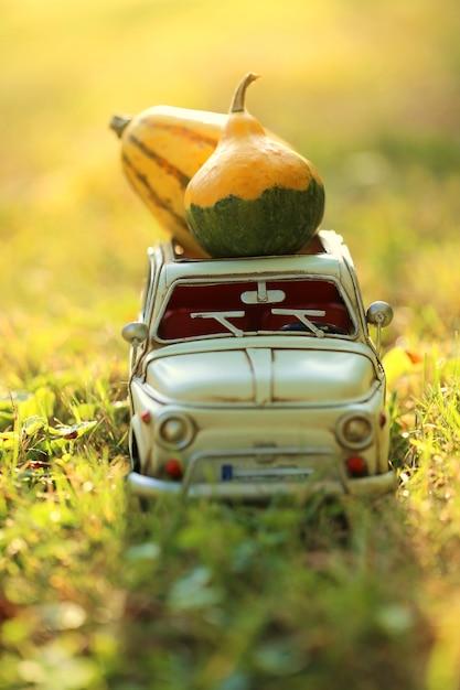 カボチャと白い車 Premium写真