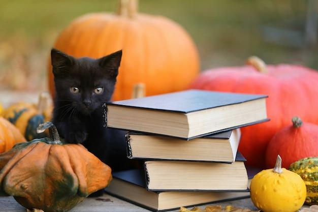 ハロウィーンの秋の本 Premium写真