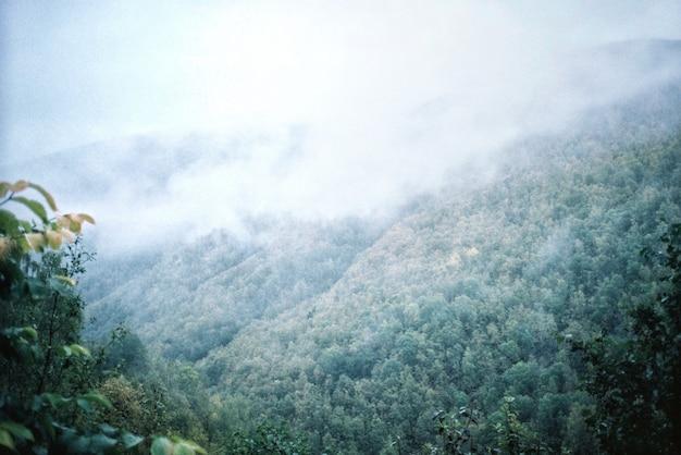 山と森の自然の風景 無料写真
