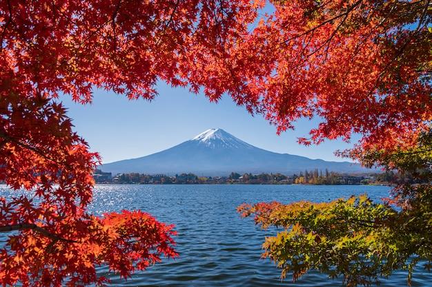 Ландшафт горы фудзи с красивыми листьями осени. Premium Фотографии
