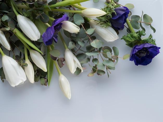 白いチューリップと青いイソギンチャク Premium写真