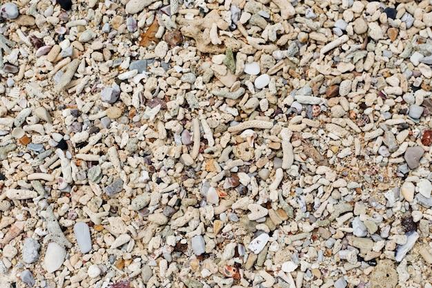 Ракушки и песок фон. разноцветные ракушки. текстура пляжа. Premium Фотографии