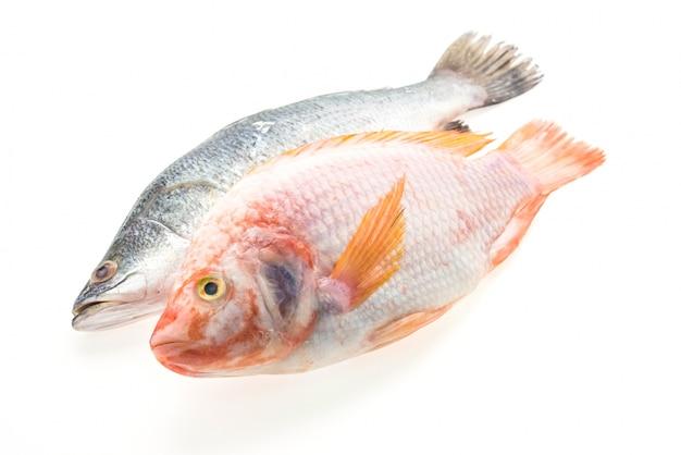 Свежая целая рыба Бесплатные Фотографии
