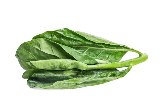 Китайская капуста овощ на белом фоне. Бесплатные Фотографии
