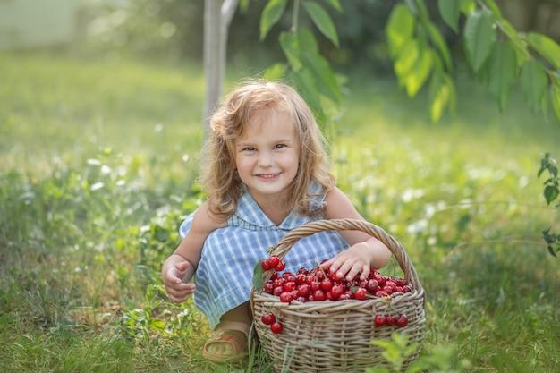 果樹園の熟した甘い夏の果実 Premium写真