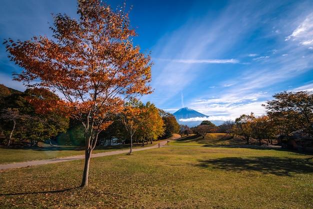 富士宮、日本の日の出で紅葉と狸湖の上の富士山の風景画像。 Premium写真