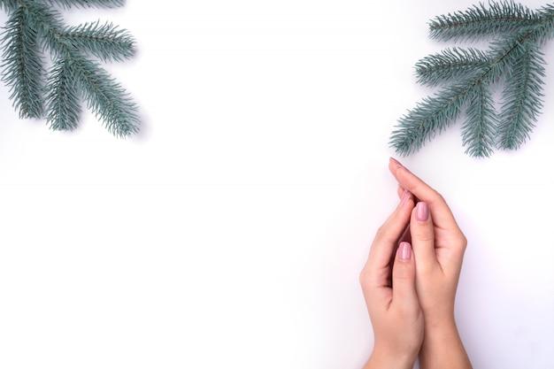 ファッション、マニキュアの女性の手、ネイルケア、クリスマスツリーの小枝 Premium写真
