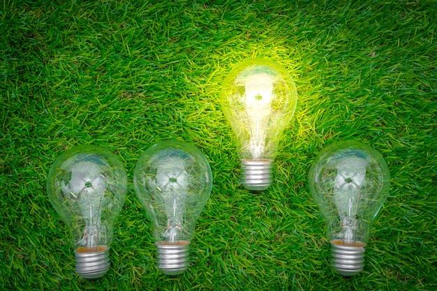 エコのコンセプト - 電球は、草の中に育ちます 無料写真