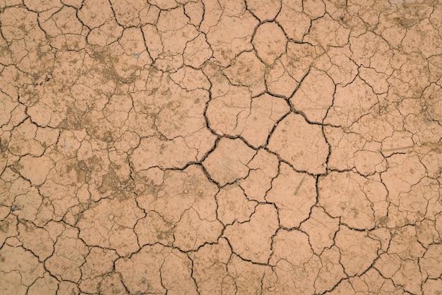 乾燥してひび割れた地面テクスチャ。 無料写真