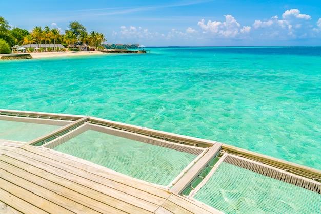 熱帯のモルディブ島の休暇ネットシートとサンゴ礁のある海の美しさ。 Premium写真