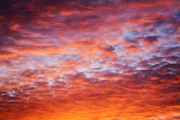 夕方には劇的な魔法の雲模様 Premium写真